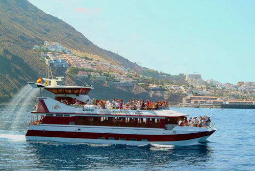 Family Attractions Tenerife: Royal Delfin