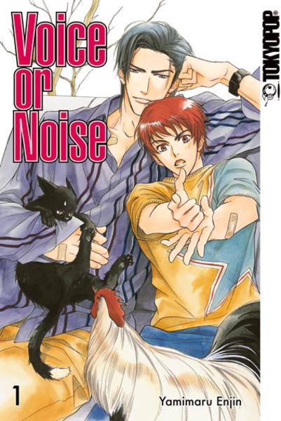 Voice or Noise 01   Schwule Bücher im Online Buchshop Gay Book Fair