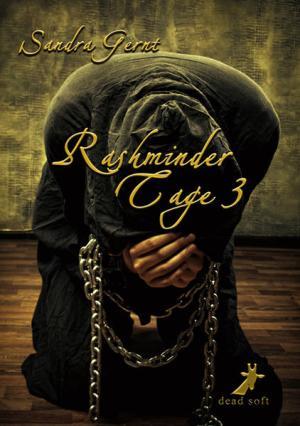 Rashminder Tage 3   Schwule Bücher im Online Buchshop Gay Book Fair
