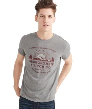 Abercrombie-Camiseta-Manga-Curta-Abercrombie-Gráfica-Cinza-8937-1418473-1-zoom
