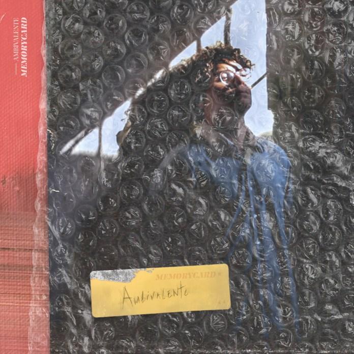 Capa do álbum Memorycard