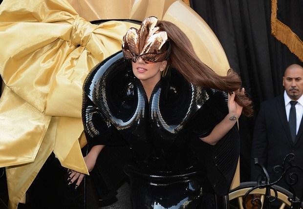 Espécie de inseto recebe nome científico em homenagem a Lady Gaga