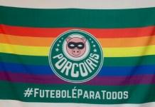 Torcedores de futebol querem bandeira LGBTQIA+ no Allianz Parque