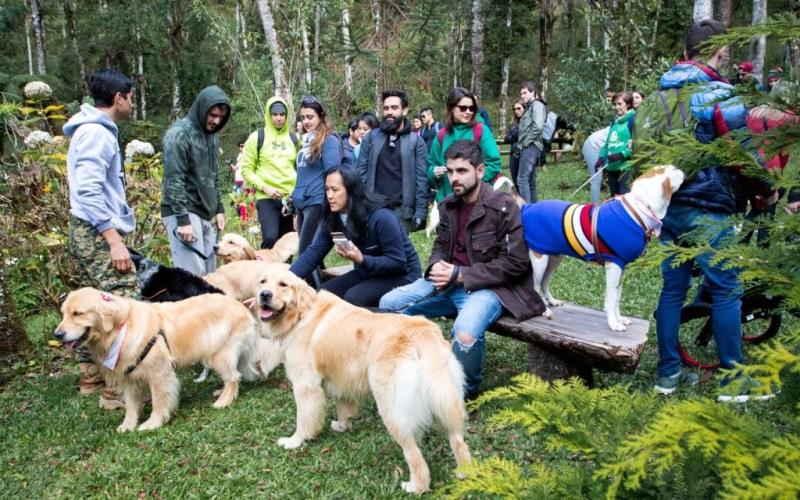 pet Projeto será feito pelo especialistaa em comportamento animal Cleber Santos, em parceria com o Hotel Surya-Pan, de Campos do Jordão