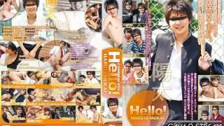 【CTO436-Disc 1】Hello!向井陽太 COMPLETE BOX