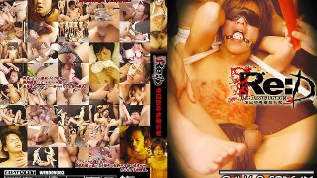 【WST112】 Re:D 3 『虐囚堕辱虐酷折檻』