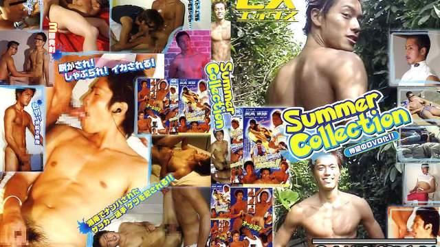 【JPN135_B】EX Summer Collection