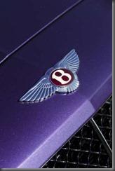 2012 betley continental and convertible  (9)