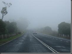 Picton NSW (6)