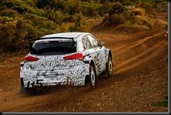 Hyundai Motorsport's new R5 rally car gaycarboys (2)