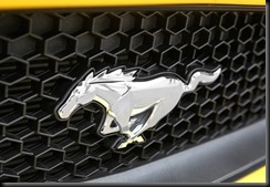 Ford Mustang gayCarBoys 2016 (5)