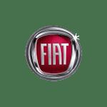 Fiat Logo Make Brand