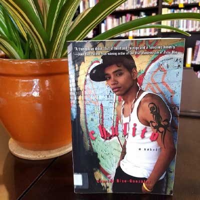 Chulito: A Novel by Charles Rice-Gonzalez