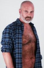 Bear 23