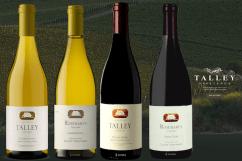 Talley Vineyards Bouschet Wine