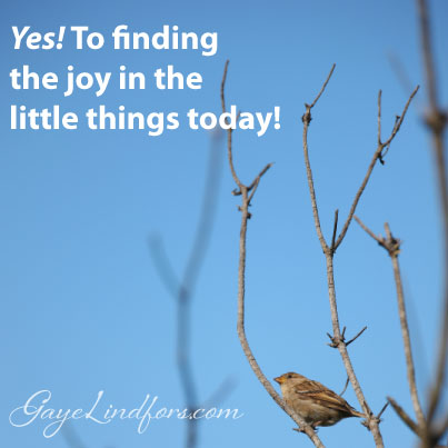 Yes! To Finding Joy