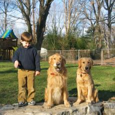 boyhisdogs