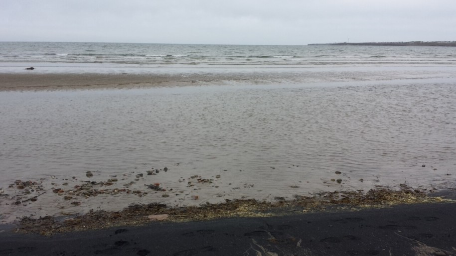 The ocean is just so pretty, even in the gray and gloom.