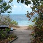 benchpicnic-beach