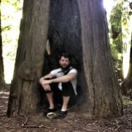 Peter, Avenue of the Giants, Humboldt Redwoods State Park, California