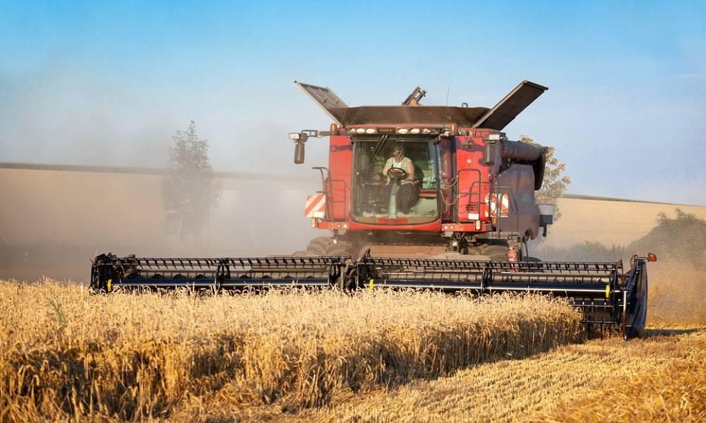 Хозяйства Алтайского края завершают уборку зерновых