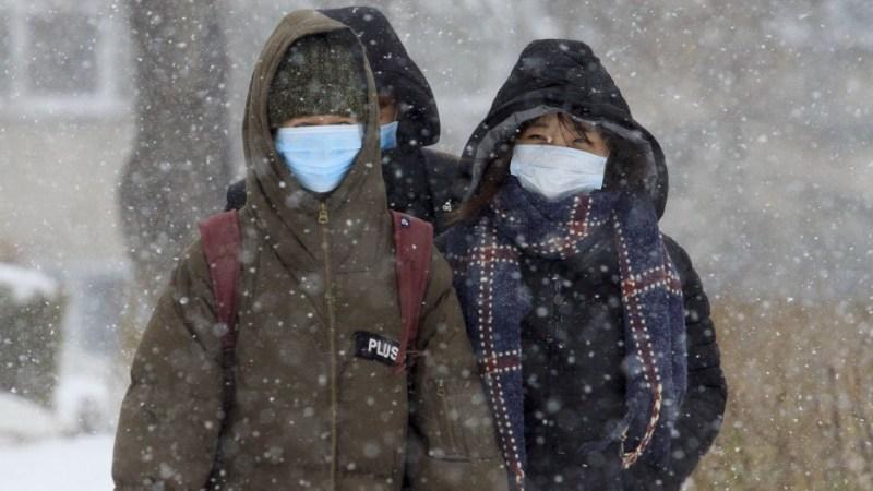 МЧС: на Алтайский край надвигаются метели и мокрый снег