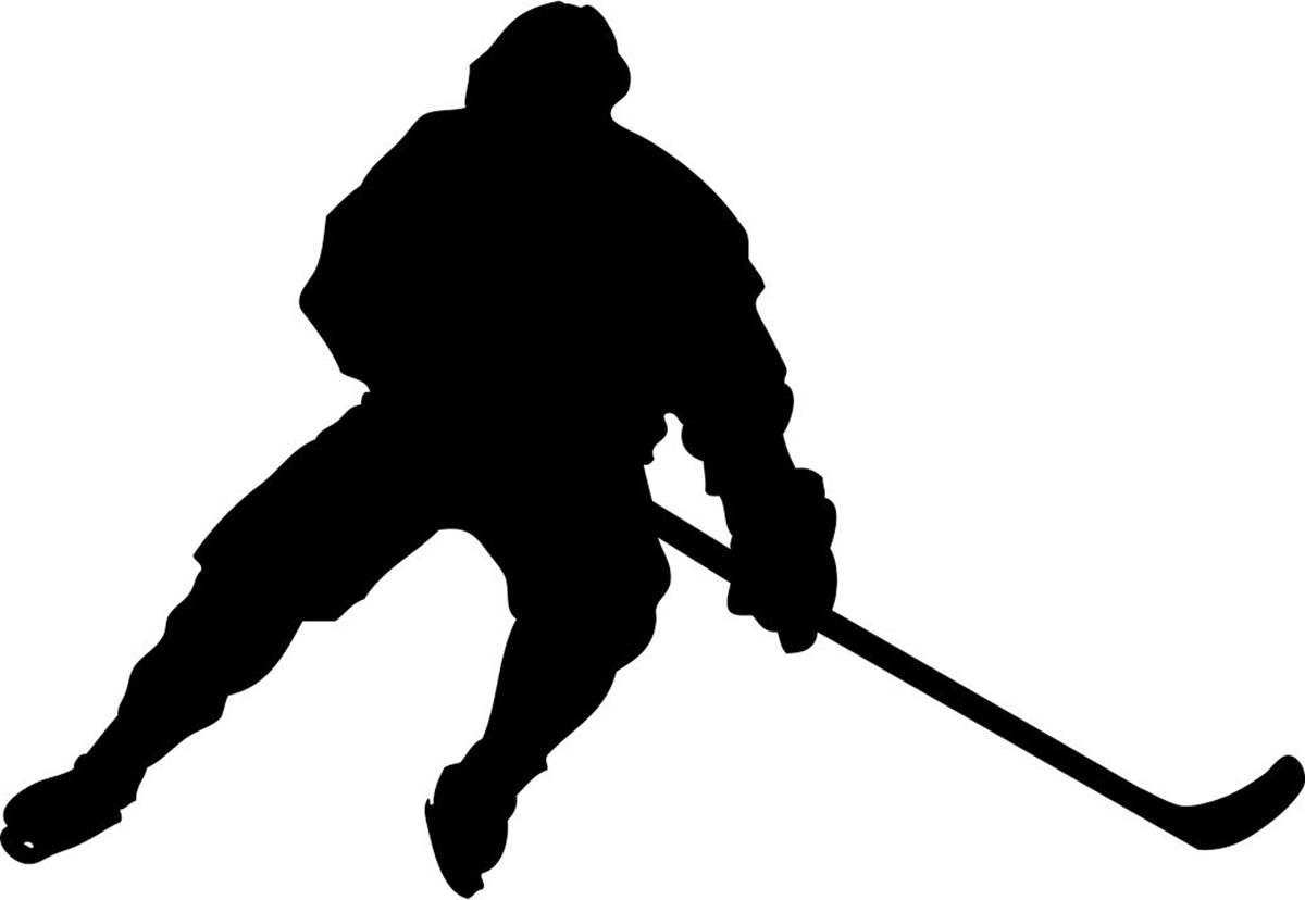 Наши хоккеисты едут в край