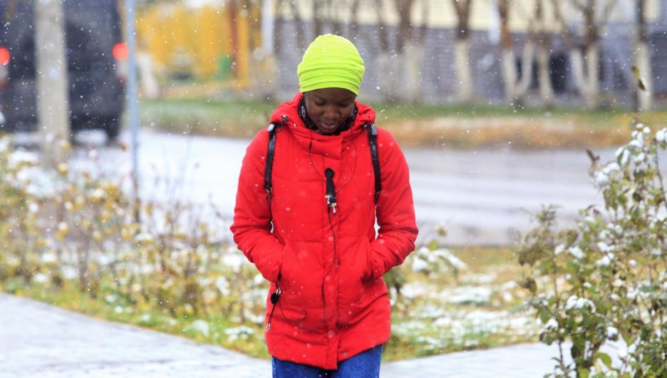 Мокрый снег, заморозки и ветер до 100 км/ч. Алтайский край ощутит на себе первое дыхание зимы