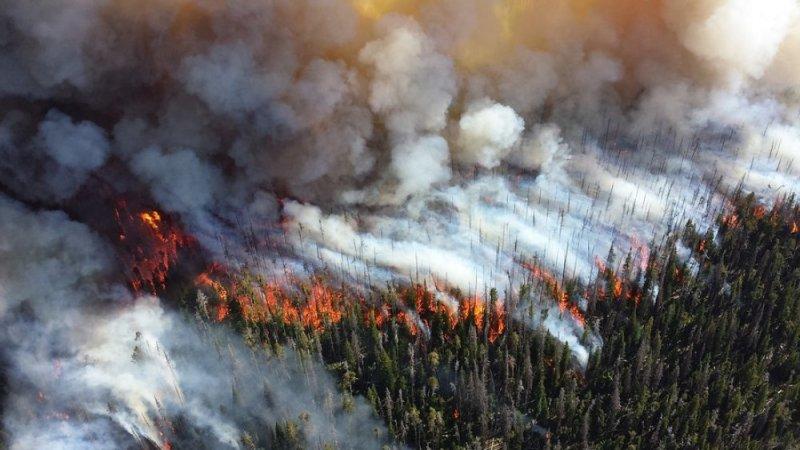 С 28 апреля в Алтайском крае введен особый противопожарный режим