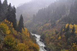 Aysun Kurtuluş - Papart Ormanı ve Karçal Dağları