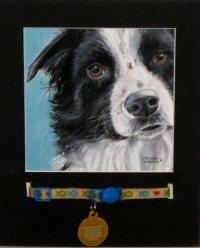 Haley-dog