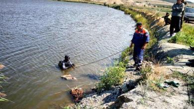 Тела двух влюбленных нашли в пруду
