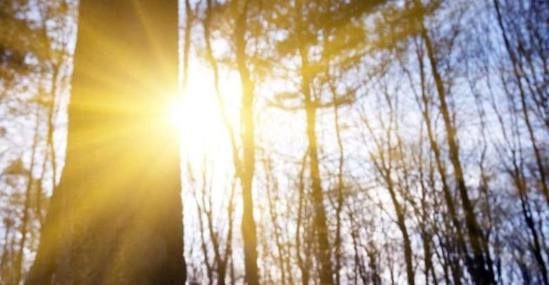 Погода в Балаково на завтра, 14 апреля, и народные приметы: счастливый ли завтра день?