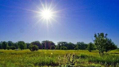 Погода в Балаково на неделю: от прохлады к жаре и наоборот