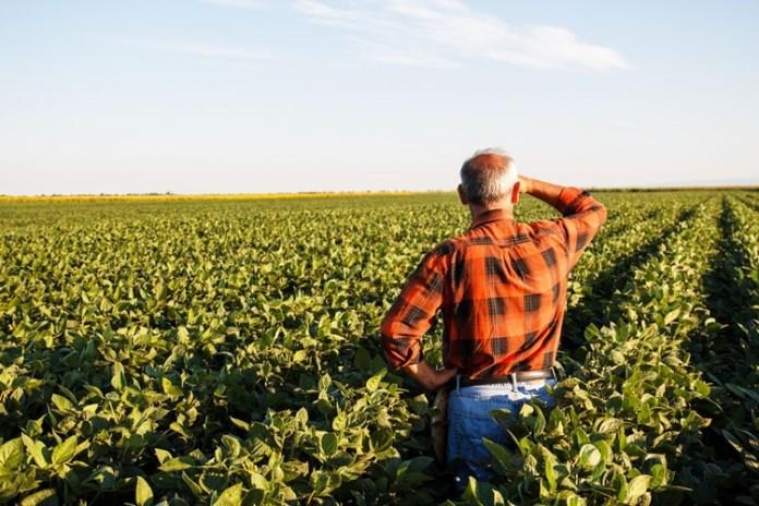 Produtores rurais poderão refinanciar dívidas . Foto: Agência Brasil