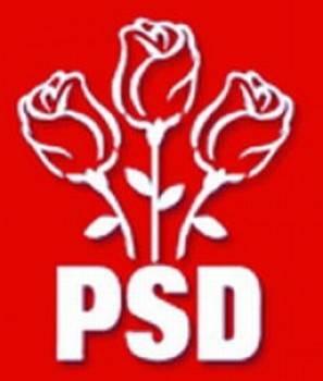 """PSD Ploieşti: """"Mai aveți pisici moarte, domnule primar Dobre?"""""""