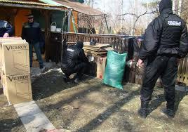 Ploiești/Poliția a făcut percheziție generală în cartierul Mimiu. VIDEO