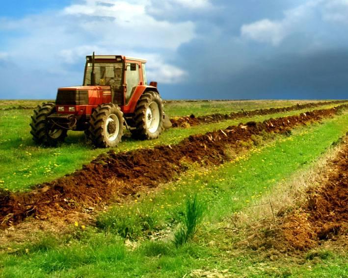 Agricultorii prahoveni pot primi certificate europene