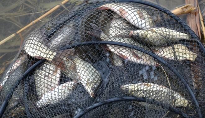 Trei tone de peşte, 15 bărci şi 180 de plase confiscate de la braconieri