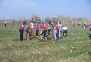 Ploieştenii, invitaţi la o acţiune de plantare de copaci în parcul Cina