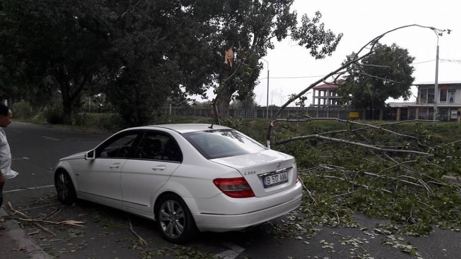 8 morţi şi 137 de răniţi după furtuna care a lovit România