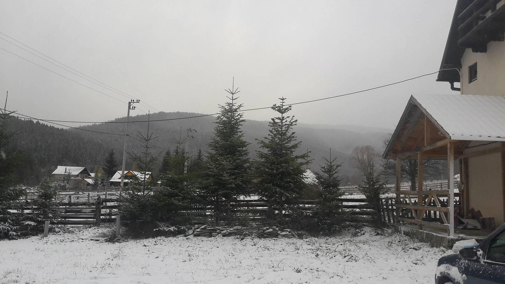 Foto: Prima zăpadă pe Valea Doftanei