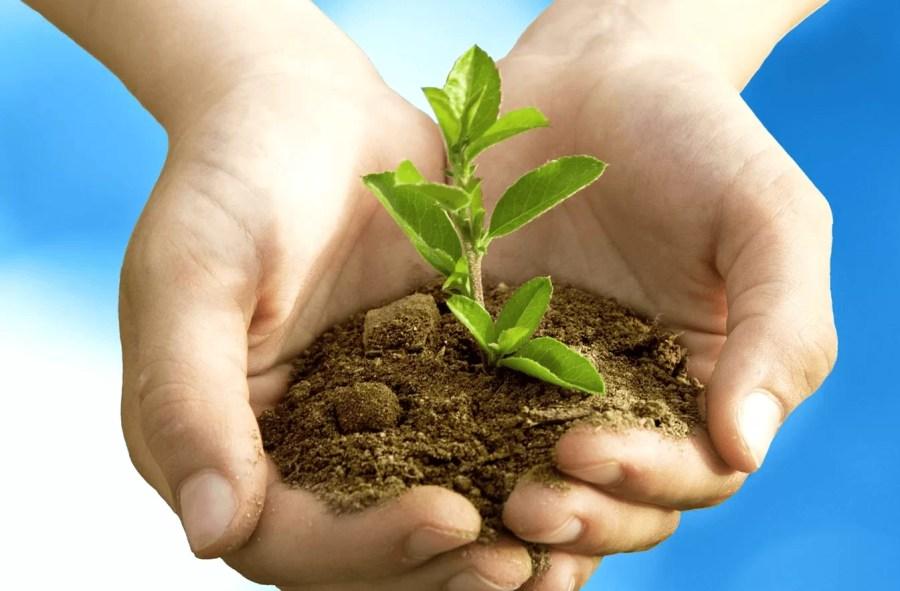 """Primăria Bucov înfiinţează """"Garda Verde"""" – pentru o localitate curată şi îngrijită"""