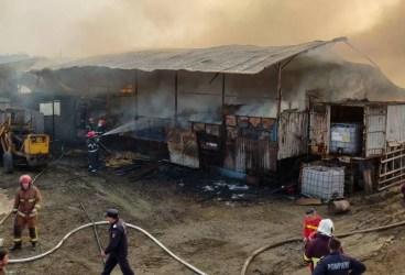 Fermă populată cu 250 de vaci şi porci, cuprinsă de incendiu