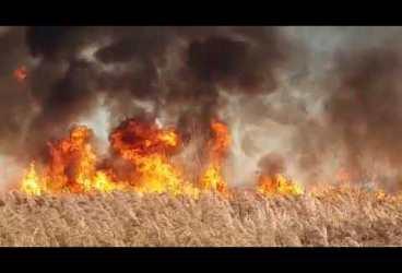 Orașul Boldești-Scăieni, pus în pericol de incendii de vegetație violente