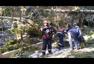Pompierii degajează drumurile din Bucegi de capacii căzuţi la furtună