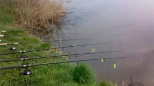Pescar electrocutat
