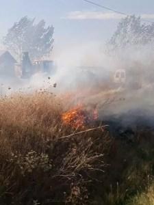Incendiu de vegetație uscată - mai multe case în pericol!