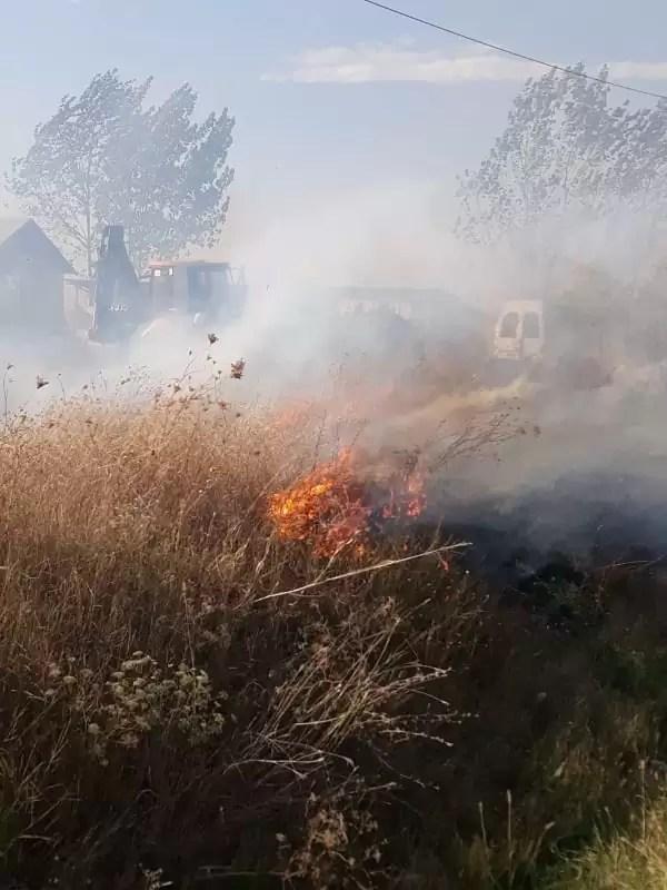 incendiu de vegetatie uscata
