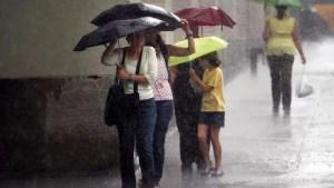 Avertizare meteo. Cod galben de ploi, vijelii și grindină în OLT și în alte 32 de județe